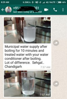 Dcal Customer Testimonial through whatsapp