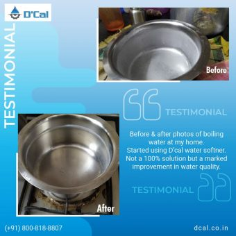 DCal Reviews & Testimonials